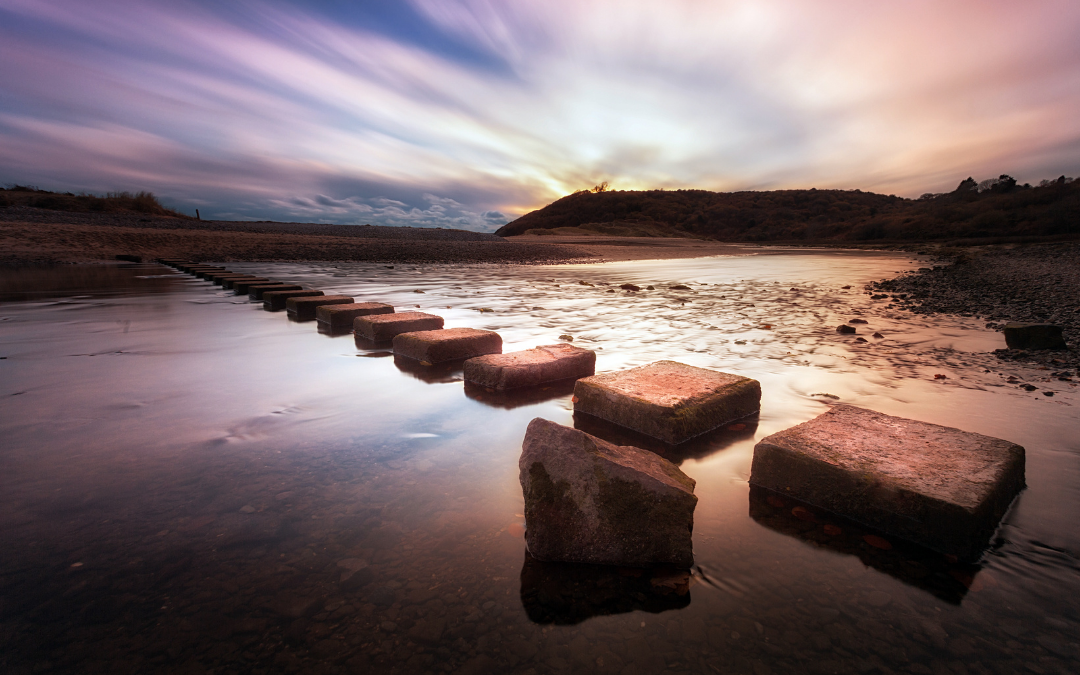 Stepping Stones. Healing with Homeopathy